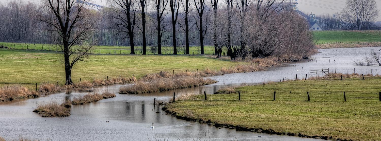 Gewässer   Deichverband Bislich-Landesgrenze